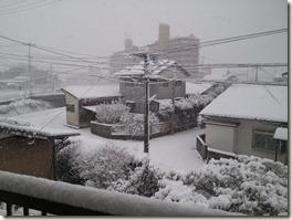 自宅雪景色01