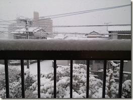 自宅雪景色03