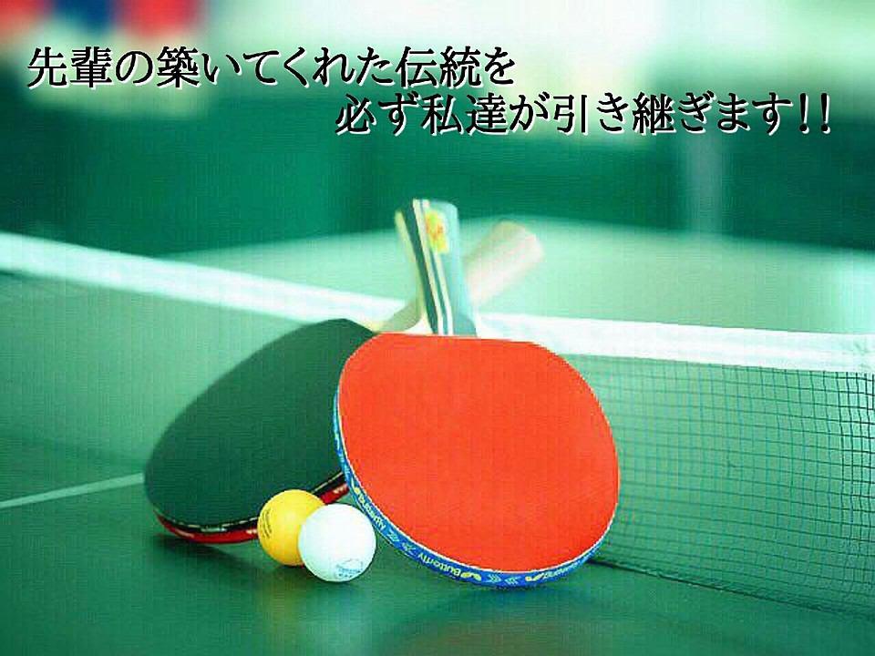 松平賢二,ロング,カットマン,日本リーグ,バックカット,フォアカット,卓球,塩野真人