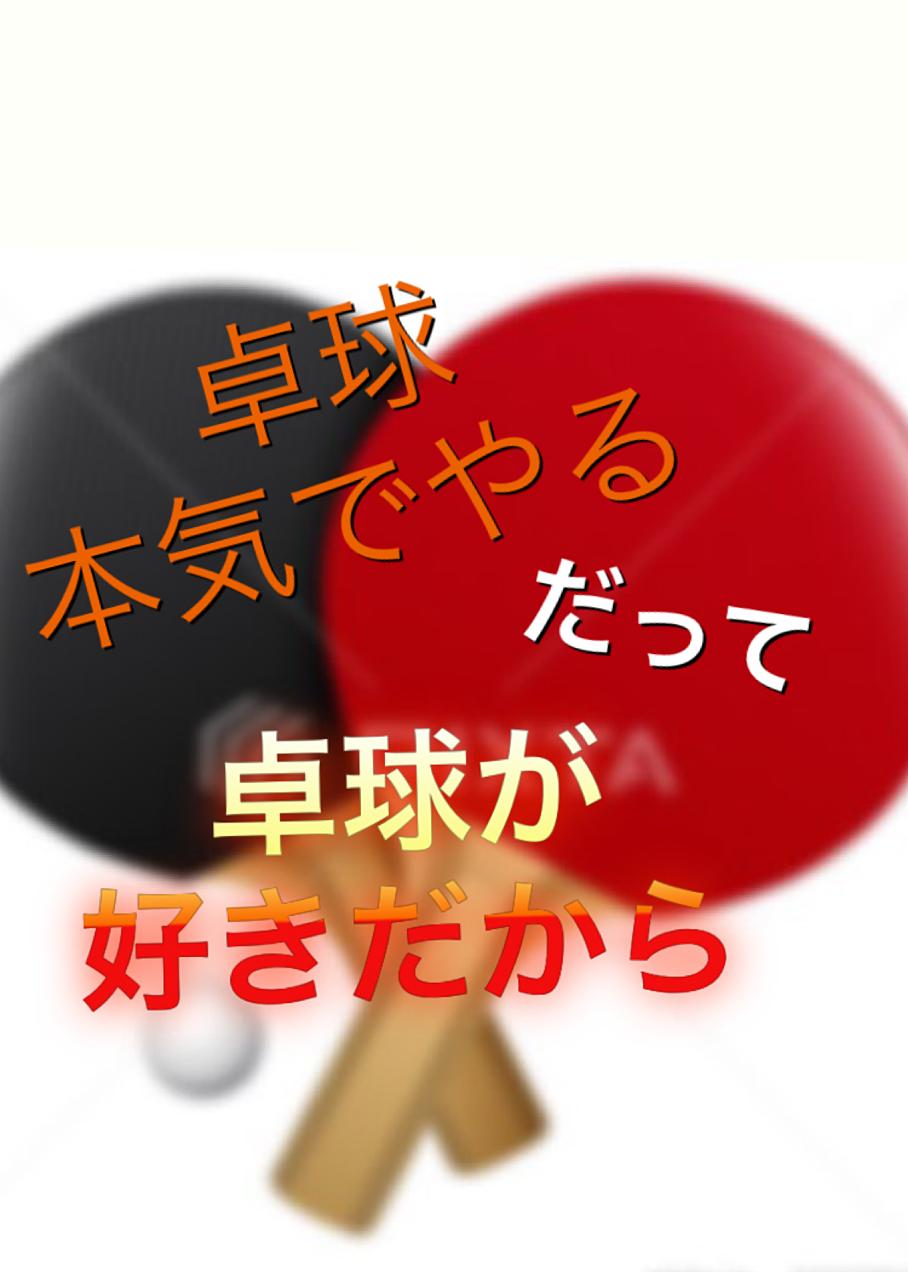卓球動画「村松雄斗 VS 張本智和 2016年ワールドツアーグランドファイナル」
