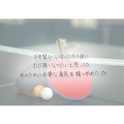 平成29年度 全日本卓球選手権大会、男女のダブルスの優勝決まる!