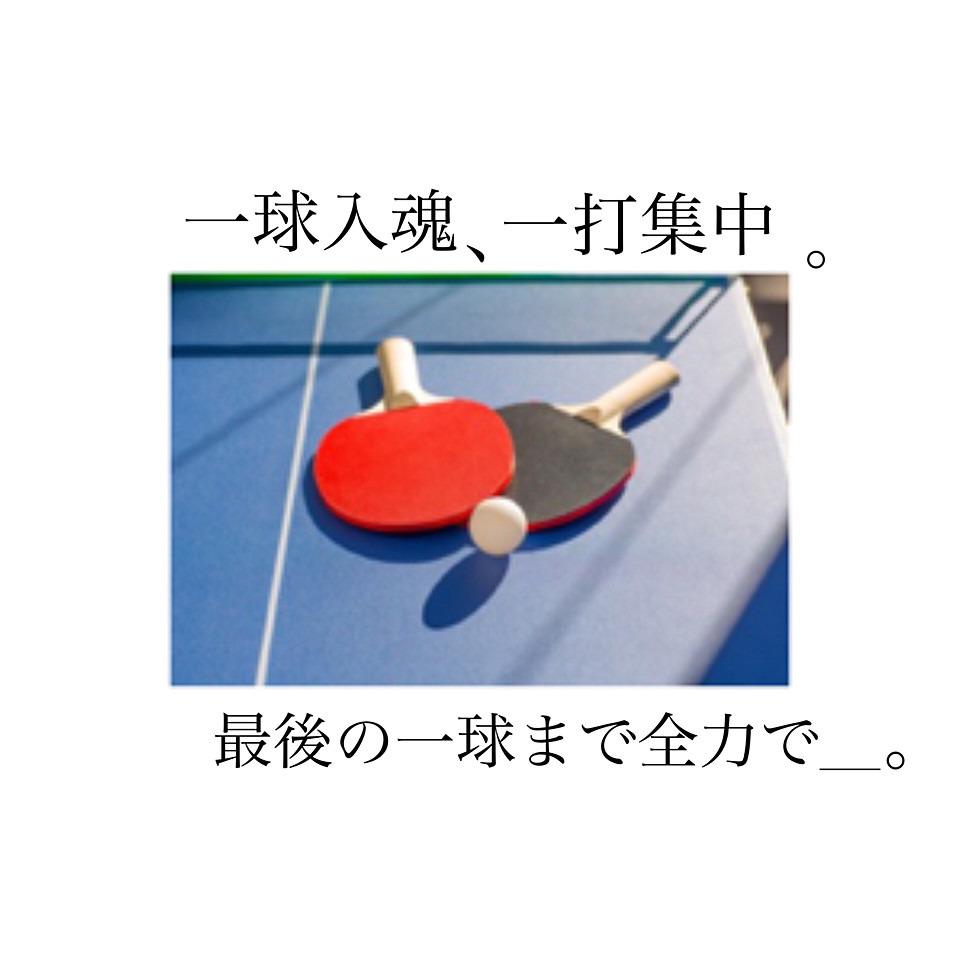 卓球、Tリーグ開幕!
