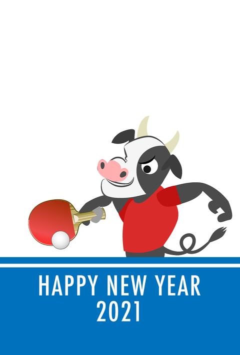 2021年、新年明けましておめでとうございます。